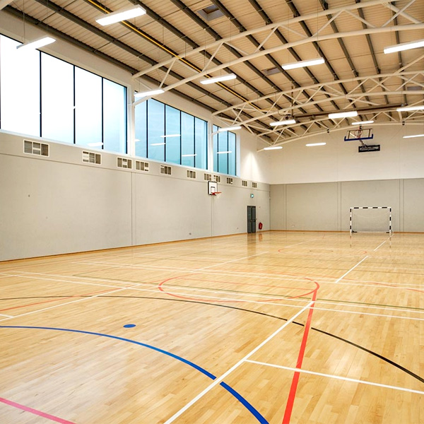 sports halls and gymnasiums